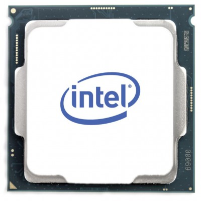 Intel Celeron Dual Core G4950 Tray