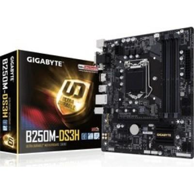 Gigabyte B250M-DS3H