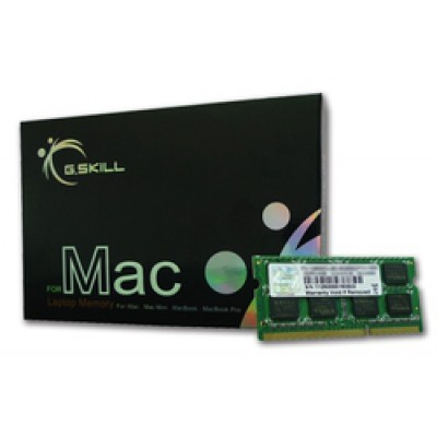 G.Skill 4GB DDR3-1066MHz Mac (FA-8500CL7S-4GBSQ)